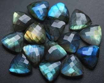5 Matched Pair,Labradorite Faceted Trillion Shape,10 Piece of 14mm