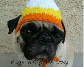 Halloween-thanksgiving-Candy Corn-pugs-cute dog hats-halloween costumes for pugs-thanksgiving hats for dogs-funny dog hats-dog costume