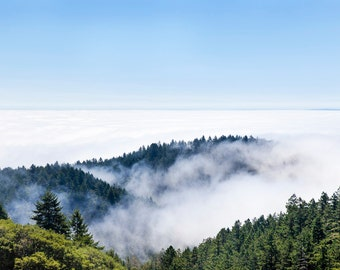 Fog on Mount Tamalpais, California, America. Fine Art Photography. Framed Photo. Large Photo Prints. Landscape Prints. Home Decor, Wall Art.