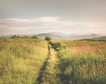 Fields - Mountains - Beauty Spot - Mountain Photography - Wall Art - Green - Blue - Path