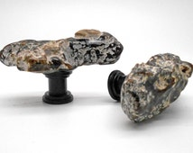 Limb Cast Cabinet Knobs  - Set of 2, Fossil, Kitchen cabinet knobs, Beach Decor, Drawer Pull, Fixture, branch, tree. limb, nature