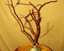 Manzanita Branch & Hand Painted Patron Bottle - Decanter, Centerpiece, Jewelry Tree, Tie Rack, Home Decor