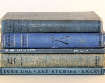 Five Book Grouping - Blue