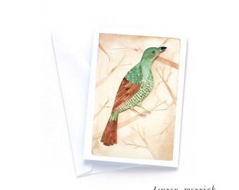 Greeting Card - Female Bower Bird