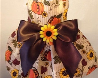 Sunflower and Pumpkin Dog Dress