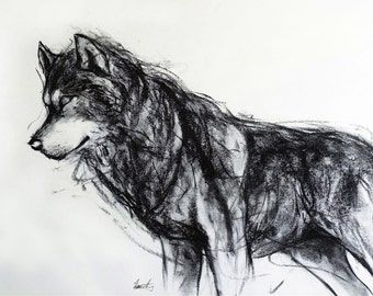 Wolf charcoal drawing giclee art print by Fiona Tang