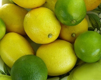 Artificial faux Limes and Lemons 20-pack