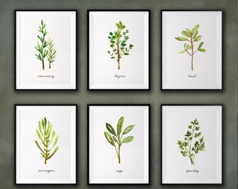Herb watercolor painting Kitchen art Herb print Set of 4