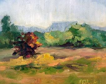 Field Study8- 8x10 original oil painting on canvas board, unframed