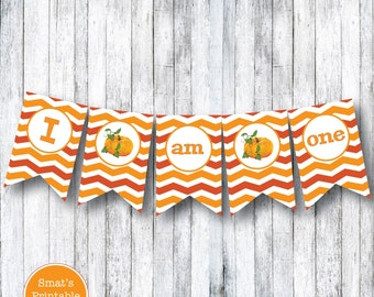 Pumpkin Autumn I Am One High Chair Banner Decoration - PRINTABLE I Am 1 First Birthday Party Theme DIY - Orange Pennant - 1st