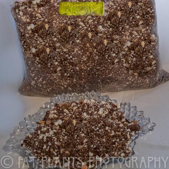 Fat plants cactus and succulent soil mix for Soil for succulents