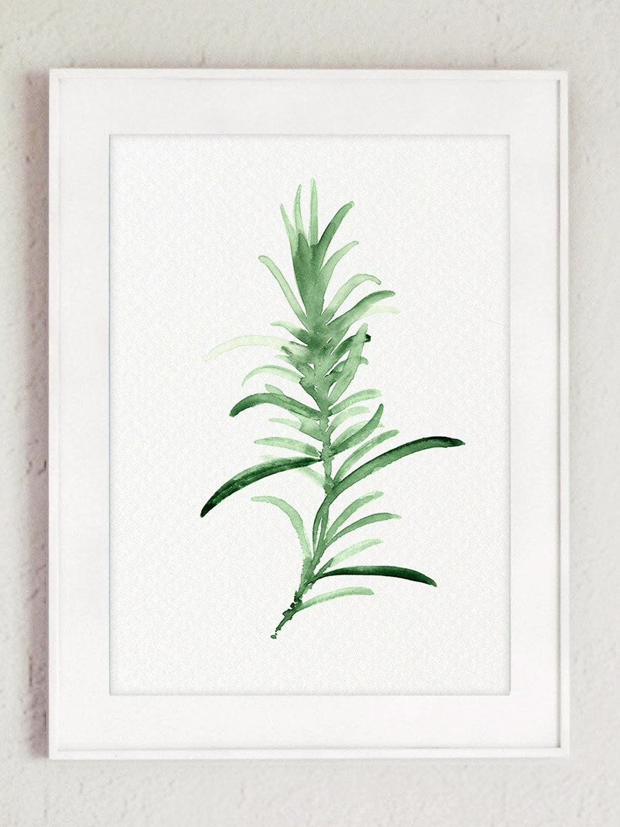 Rosemary Watercolor Painting Green Kitchen Wall Art Print