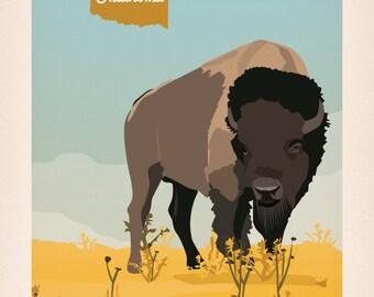 Vintage Oklahoma Series Postcard #2 - Buffalo - OK State Animal