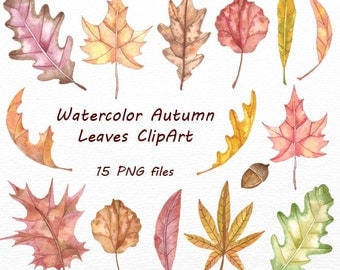 Watercolor autumn leaves clipart, Digital Clipart, Autumn clip art, Watercolor Foliage, Leaves, fall leaves, Personal and Commercial Use