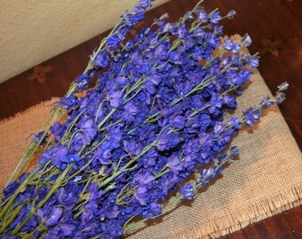 Larkspur, Purple larkspur, Dried larkspur