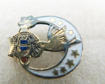 Vintage Daughters of Rebekah Lapel Pin