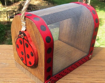 Cute Bug Box