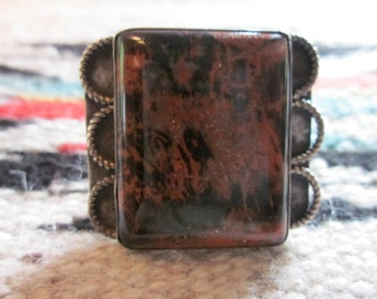 Rich Native American Petrified wood Ring