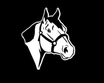 154 Quarter Horse / Halter Decal