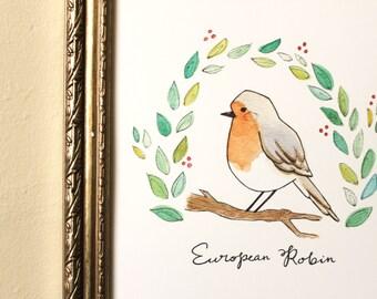 European Robin Print, Watercolor Bird Art, Bird Illustration, Animal Nursery Art, Art for Bird Lovers, Bird Watching