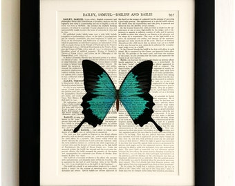 ART PRINT on old antique book page - Large Turquoise Butterfly, Vintage Upcycled Wall Art Print, Encyclopaedia Dictionary Page, Fab Gift!