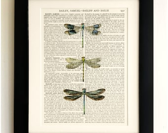 ART PRINT on old antique book page - 3 Dragonflies, Vintage Upcycled Wall Art Print, Encyclopaedia Dictionary Page, Fab Gift!