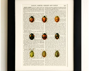 ART PRINT on old antique book page - 9 Labybirds/Ladybugs, Vintage Upcycled Wall Art Print, Encyclopaedia Dictionary Page, Fab Gift!