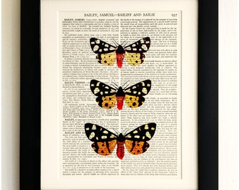 ART PRINT on old antique book page - 3 Butterflies/Moths , Vintage Upcycled Wall Art Print, Encyclopaedia Dictionary Page, Fab Gift!