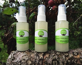 Cinnamon Clove Hand Sanitizer: Alcohol Free/ All Natural/ Homemade/ Vegan
