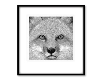 FOX - 'Alfie' - Limited Edition Print on archival quality watercolour paper