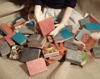 1/3 Scale Blank Paperback Books for SD BJD