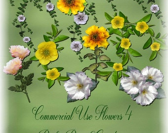 Commercial Use Flowers 4