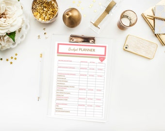 Budget Planner Printable CATEGORIZED - Monthly Finance Sheets - 12 months - Coral Pink & Gold