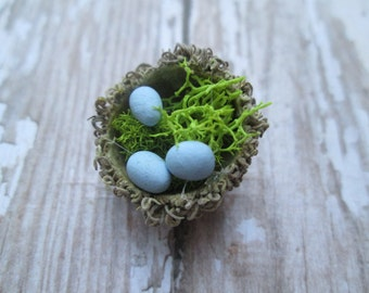 Miniature Acorn Nest with 3 Blue Eggs - Fairy Garden Bird Nest - Terrarium Accessory