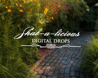 Digital Backdrop/Background/Digital Photography/serene trees/path/pavers