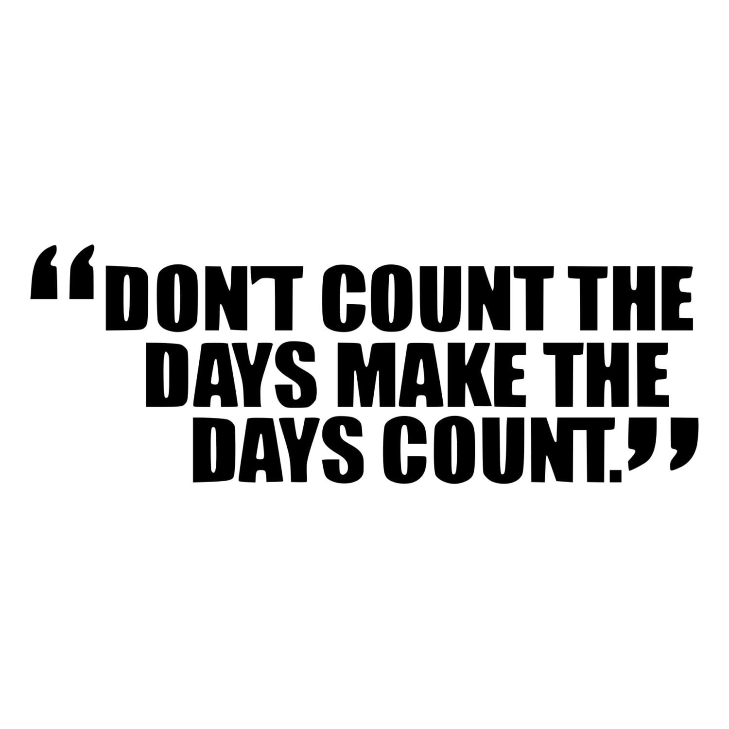 Make Your Day Count Quotes: Make The Days Count Inspirational Quote Die-Cut Decal Car