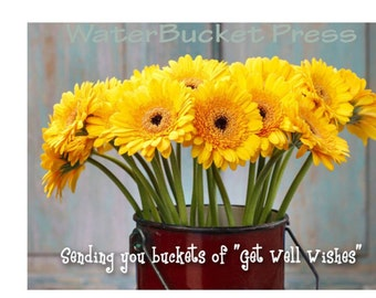 Digital Get Well Card, Daisies