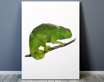 Animal poster Chameleon art Nursery print Colorful decor TO189-1