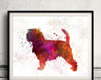 Affenpinscher 01 in watercolor 8x10 in. to 12x16 in.  Fine Art Print Poster Decor Home Watercolor Illustration Dog - SKU 1003