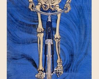 Bike Skeleton Riding Bicycle Cycle Dawis Globe Italy Italia Italian Sport Vintage Poster Repro FREE SHIPPING in USA