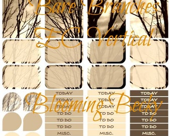 Bare Branches ECV Printable