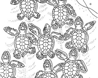 Turtle coloring Etsy