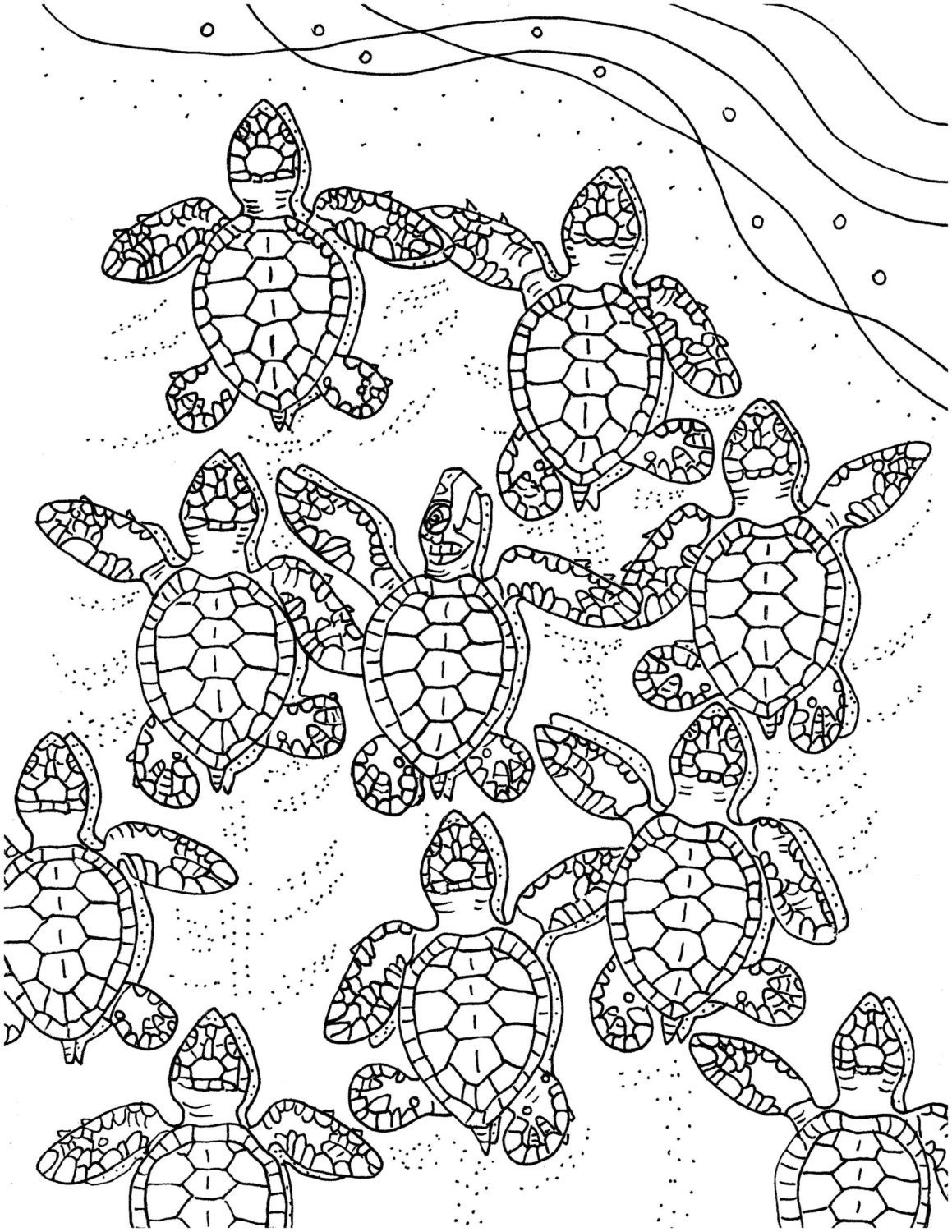 Simplicity image pertaining to sea turtle printable
