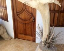 Wooden Standing Coat Rack, Natural Furniture Decoration, Coat Stand, Wooden Rack, Perchero de madera, Perchero, Decoración, Tronco de arbol