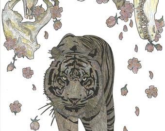Skull Hunter- A3 print: Wildlife, Skulls, tiger, buffalo, cherry blossom
