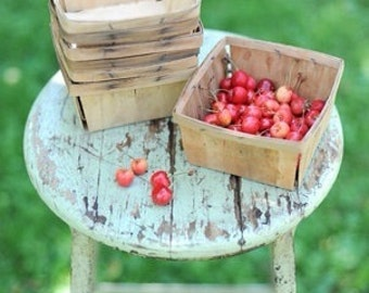 5 Rustic Berry Baskets