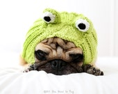 Drog Dog Hat - Frog Hat - Dog Clothing - Dog Costume - Pet Apparel - Frog Dog Halloween Costume - Pet Lover Gift - All You Need is Pug®