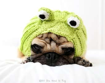 Dog Hat - Frog Hat - Dog Clothing - Dog Costume - Pet Apparel - Frog Dog - Pet Lover Gift