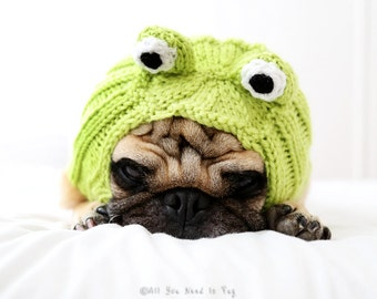 Dog Hat - Frog Hat - Dog Clothing - Dog Costume - Pet Apparel - Frog Dog - Pet Lover Gift