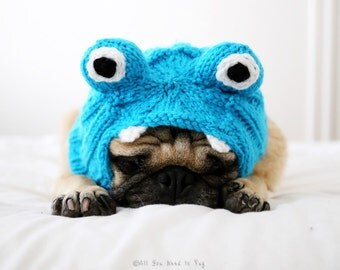 Little Monster Dog Hat - Pug Hat - Dog Costume - Dog Clothing - Pet Accessories - Winter Dog Clothes